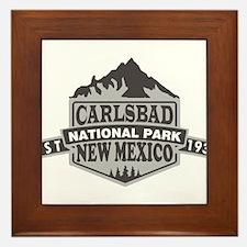 Carlsbad Caverns - New Mexico Framed Tile