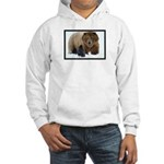Wild Brothers Hooded Sweatshirt