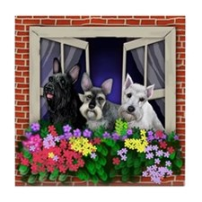 SCHNAUZER DOGS WINDOW FLOWERS Tile Coaster