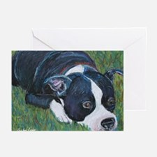 Staffordshire Bull Terrier Greeting Cards (Package