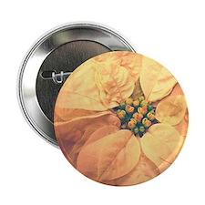 Creamy Pooinsettia Button