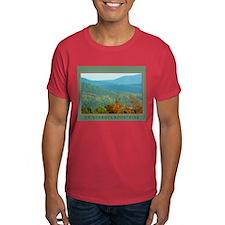 Adirondack Mountains T-Shirt