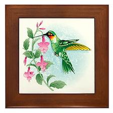 FUCIA HUMMINGBIRD Framed Tile
