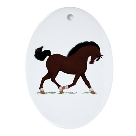 Dark Brown Horse Socks Star Oval Ornament