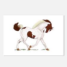 Chestnut Skewbald Horse Postcards (Package of 8)