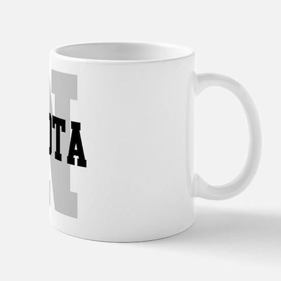 MN Minnesota Mug