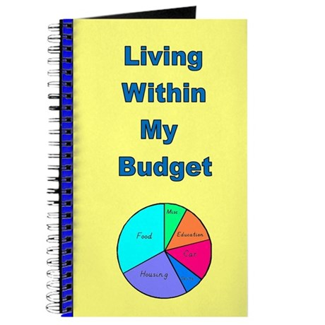 Living Within My Budget