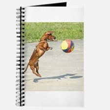 Jumping Doxie Journal
