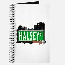 HALSEY ST, BROOKLYN, NYC Journal