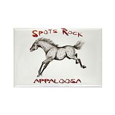3_Spots Rock Rectangle Magnet (10 pack)