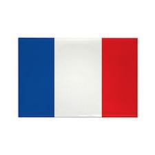 FRANCE Rectangle Magnet (100 pack)