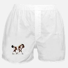 Bay Tobiano Pinto Horse Boxer Shorts