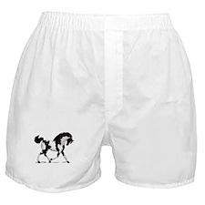 Black Tobiano Horse Boxer Shorts
