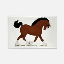 Bay Clydesdale Horse Rectangle Magnet