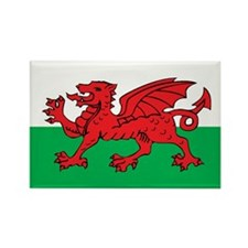 WALES Rectangle Magnet (10 pack)