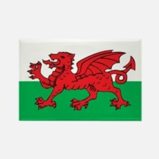 WALES Rectangle Magnet (100 pack)