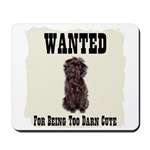 Affenpinscher Wanted Poster Mousepad