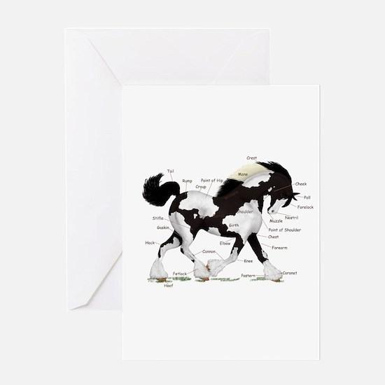 Black Gypsy Horse Anatomy Greeting Card