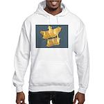 The Great White Cody Hooded Sweatshirt