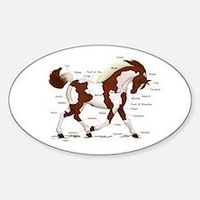 Chestnut Tobiano Horse Anatomy Oval Decal