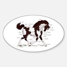 Black Tobiano Horse Anatomy Oval Decal