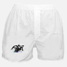 Orca Triple Jump Boxer Shorts