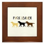 Labrador Pack Leader BYC Framed Tile