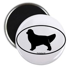 Golden Retriever Oval Magnet