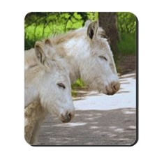 Dozing Donkeys Mousepad