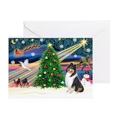 Xmas Magic & Collie Greeting Cards (Pk of 10)