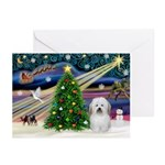 Night Flight/Coton #1 Greeting Cards (Pk of 20)