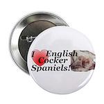 Harry English Cocker Spaniel Button (100 pk)
