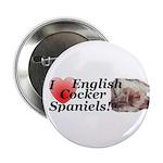 Harry English Cocker Spaniel Button