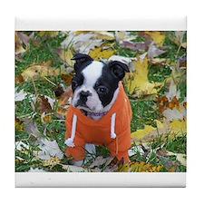 Cute Terrier Tile Coaster