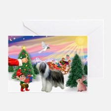 Treat for a Bearded Collie Greeting Card