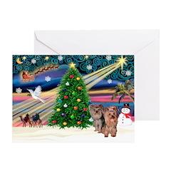 XmasMagic/2Yorkies (Pr1) Greeting Card