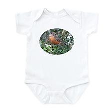 Robin Redbreast Infant Bodysuit