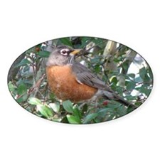 Robin Redbreast Oval Sticker (10 pk)