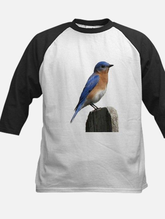 Eastern Bluebird Tee