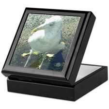 Portsmouth NH Seagull Keepsake Box