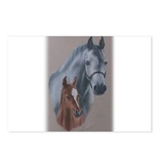 Grey Mare and Chestnut Foal Postcards (Package of