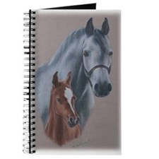 Grey Mare and Chestnut Foal Journal