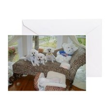 BICHONS AND A BEAR GREETING CARD