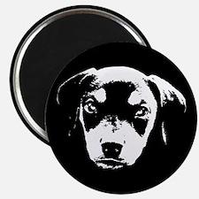 Dobe Pup Magnet