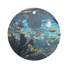 NNH Acquarium Ornament (Round)