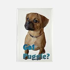 Got Puggle? Rectangle Magnet (100 pack)
