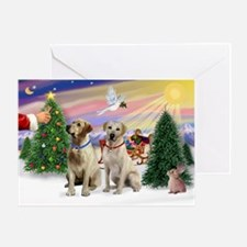 Treat for 2 Yellow Labs Greeting Card