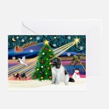 Xmas Magic & Newfie Greeting Cards (Pk of 20)