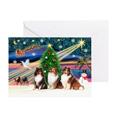 XmasMagic/3 Shelties(t3) Greeting Card