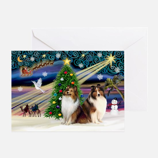 XmasMagic/2 Shelties-S Greeting Card